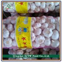 Wholesale Chinese 2015 Crop Fresh Nautral Garlic