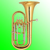 Professional 3+1 Piston Brass Euphonium Of Price