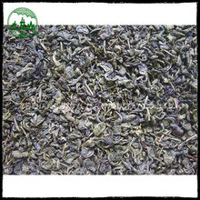 Chinese high quality green tea buyers