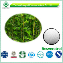 Natural source plant extract GMP bulk pure Resveratrol