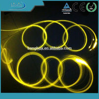 PMMA Side Light 0.75mm /1.0mm /1.5mm /2.0mm /2.5mm /3.0mm Plastic Fiber Optic Light