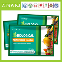 effective microorganism fertilizer seed fertilizer