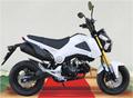 new stytle moto de poche de haute qualité avec le prix concurrentiel pour trois