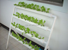 Indoor hydroponic greenhouse