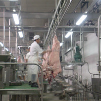 Pork processing machine,halal slaughtering machine