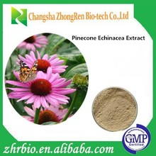 GMP factory 100% pure natural Echinacea Purpurea Extract Powder