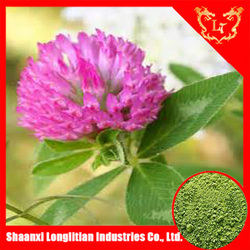 high quality red clover herb extract powder
