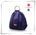 La conception populaire de loisirs en nylon sac à dos ordinateur portable, vente en gros sac à main pas cher