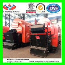 DZL Steam Boiler for Food Industries 10 ton Coal Fired Steam Boiler for Sale