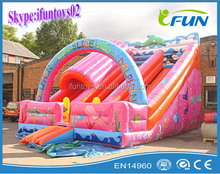 outdoor Mini Inflatable Dolphin Slide/outdoor inflatable slide/china inflatable slide