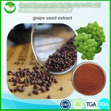 Hot selling grape seed extract powder