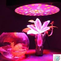 180w led grow light full spectrum led plant grow light 180w led hydroponic grow light for greenhouse
