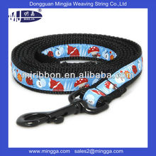 fashion flexible polypropylene pet leash