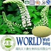 Hot sale Black Cohosh extract/Triterpenes 15%/Anti-cancer plant extract