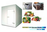 Walk In Freezer Cold Storage For Vegetable
