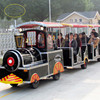 FRP colourful electric trackless train for sale
