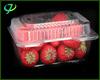 Plastic Fruit Tray Wholesale