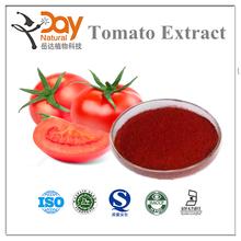 100% Natural Freeze Dried Tomato Powder Vegetable Powder