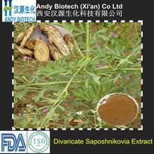 4:1/10:1/15:1/20:1 Chinese Traditional Medicinal Materials Fangfeng Extract Divaricate Saposhnikovia Extract