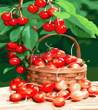 CHERRY FRUIT OIL PAINTING INDIAN BY NUMBERS ABSTRACT 40*50