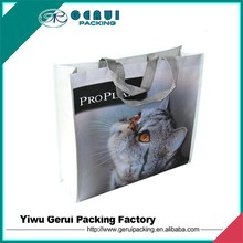 Environmental hot sales pictures printing pp woven shopping bag