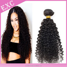 Hot hair 7A Grade Kinky Curl Virgin Human Hair Malaysia kinky Curly Virgin Hair
