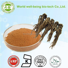 100% Nature Chinese Angelica Extract/4:1~20:1,1% Ligustilide