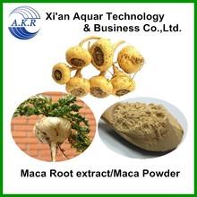 Men sexual health and sex medicines product black maca extract