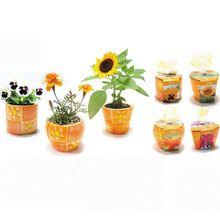 Romantic plastic gift basket shaving kit gift set for men , gift cup