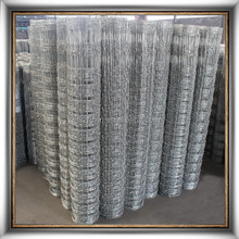 Factory product galvanized farm field fence wire 8ft