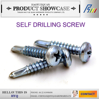Wood to matal self drilling bolts and screws manufacturer