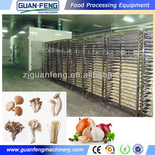 Tunnel Drying Machine 4T/time / Fruits and Vegetables dehydrator