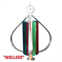 Wellsee WS-WT 300W vertical wind turbine