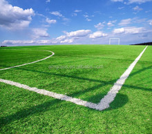 import china products soccer equipment stadium project artificial grass with good quality for sale (ASS-50D)