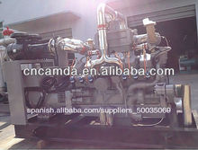 Camda de energía verde de gas equipos/gas natural generador conjunto/conjunto generador de biogás/gnc cogenerators