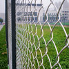 PVC coted chain link fence from plant,used chain link fence,chain link fence price