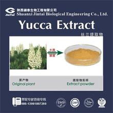 China manufacture UV The wholw herb Yucca Extract powder