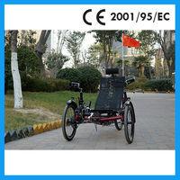 3 Wheels Tadpole Recumbent folding bike