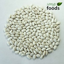 2014 New Crop Square Type White Kidney Beans Wholesale White Kidney Beans