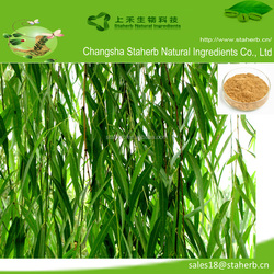 Factory supply high quality hot sale Natural White Willow Extract Salicin