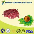 Alibaba china/schisandra extrato de fígado herbal remédio