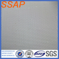 100% polyester fabric conveyor mesh belts/Plain Weave Fabric