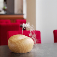 GX-diffuser plastic aroma diffuser & air diffuser same like reed diffuser wooden stick can skin care or clean air GX-06K