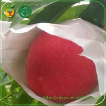 Crimson Sweet Juicy Peach