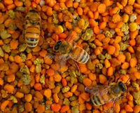 bee pollen ginseng royal jelly