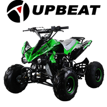 50cc/110cc/125cc ATV Quad Bike Go Kart Buggy (ATV110-9)