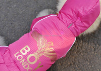 Fashionable pet clothes for dogs