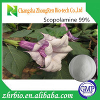 Pharmaceutical grade Scopoliae Extract Scopolamine 99% Powder