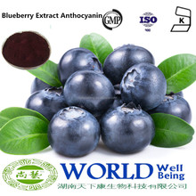 GMP Factory High Quality Blueberry Fruit Extract Powder 25% Anthocyanins Natural Blueberry Extract