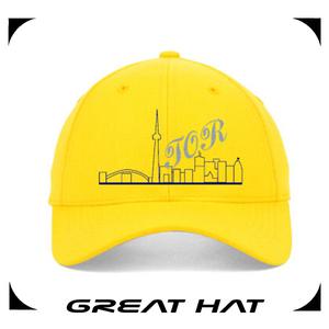 большие оптовые собственный логотип 100% хлопка шляпу и шапку